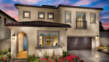 Windows and Your Garage Door: What You Should Know